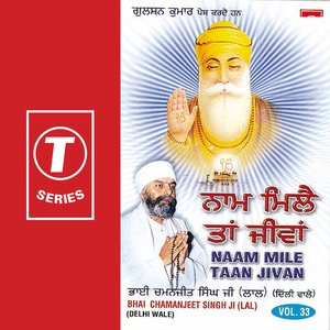 Image for 'Naam Mile Taan Jivan (vol. 33)'