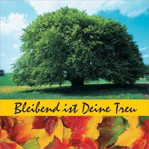 Image for 'Bleibend ist Deine Treu'