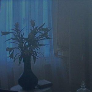 Imagem de 'An Opening'