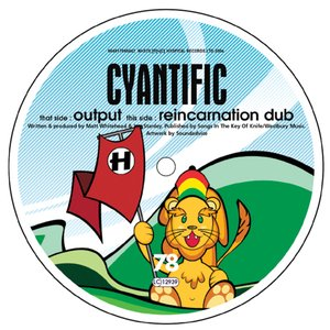 Image for 'Output / Reincarnation Dub'