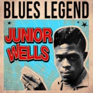 Image for 'Blues Legend'