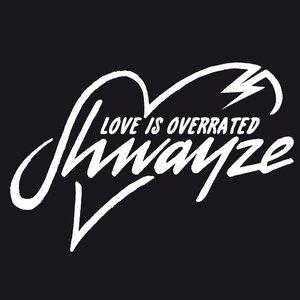 Immagine per 'Love Is Overrated - Single'
