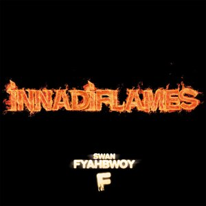 Image for 'InnaDiFlames'