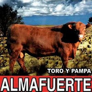 Image for 'Toro Y Pampa'