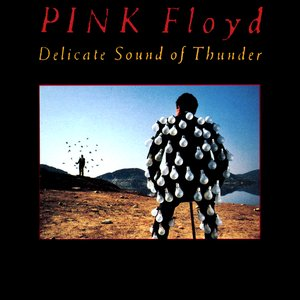 Image for 'Delicate Sound of Thunder (disc 2)'