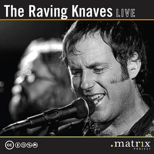 Bild för 'The Raving Knaves Live at the dotmatrix project'