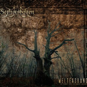 Image for 'Schlachtenbruder'