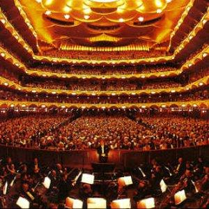 Image for 'Metropolitan Opera Orchestra'