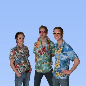 Image for 'The Hawaiians'