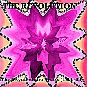 Image for 'The Psychedelic Years (1966-1968)'