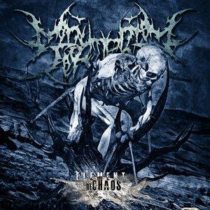 Bild für '2011 - Element Of Chaos'