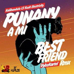 Immagine per 'Punany a Mi Best Friend (Kalibandulu x Kush Electricity Remix)'