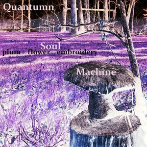 Image for 'Quantumn Soul Machine'
