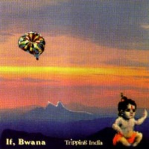Image for 'Tripping India - An Audio Travelouge, With Manipulated Percussionists'
