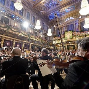 Imagen de 'The Ball Orchestra Of Vienna'