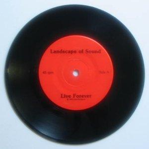 Imagen de 'Landscape of Sound'