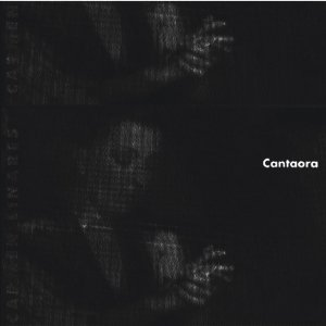 Image for 'Bordando un capote (Bulerias)'