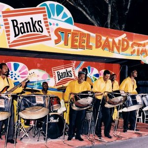 Immagine per 'Banks Soundtech Steel Orchestra'