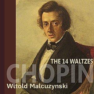 Image for 'Waltz No. 10 in B Minor, Op. 69, No. 2'