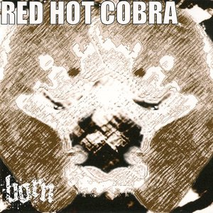 Image for 'COBRA'