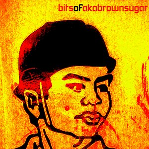 Image for 'bitsofakabrownsugar'