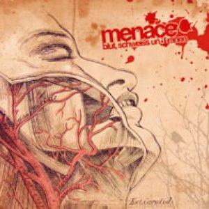 Image for 'Blut, Schweiss und Tränen'