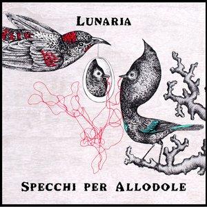Image for 'Specchi per allodole'