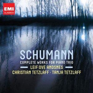 Image for 'Sech Stückein kanonischer Form, Op.56 arr. for Piano Trio: V. Nicht zu schnell'