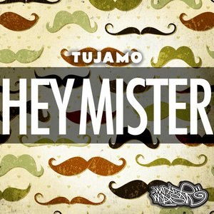 Image for 'Hey Mister'