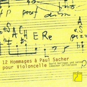Image for 'Sacher Variation'