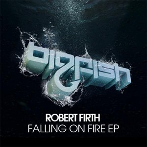 Image pour 'Falling On Fire EP'