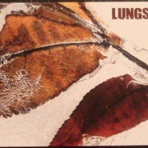 Immagine per 'Lungs'
