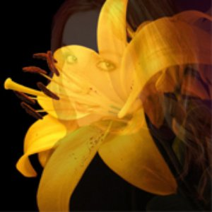 Image for 'Unsung Lilly EP'
