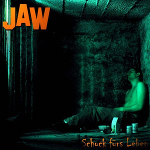 Image pour 'Schock Fürs Leben'