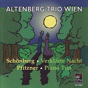 Image for 'Piano Trio in F, op. 8: Rasch und wild- Langsam- Sehr schnell'