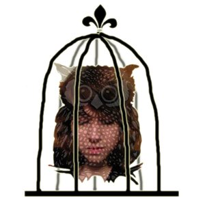 Image for 'Aubrey and the Owl'
