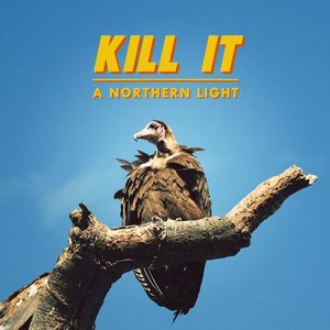 Image for 'Kill It'