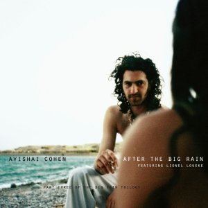 Image for 'After the Big Rain'