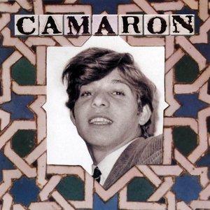 Image for 'Fandango Caracolero'