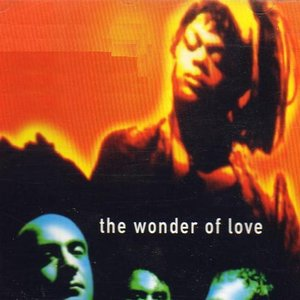 Image for 'The Wonder Of Love'