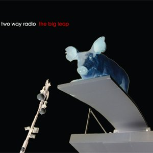 Image for 'The Big Leap'