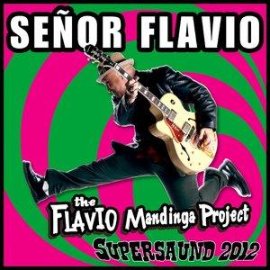 Image for 'Supersaund 2012 (The Frlavio Mandinga Project)'