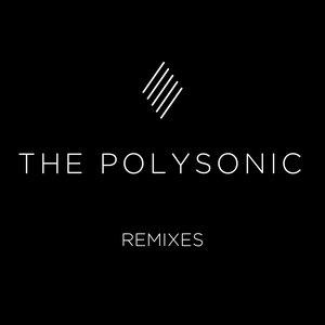 Image for 'Kakuzi - Animal (The Polysonic Remix)'