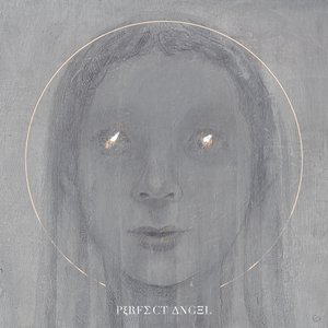 Image for 'Perfect Angel'