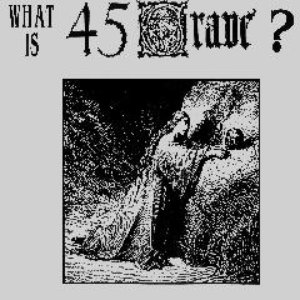 Image for 'What is 45 Grave?'
