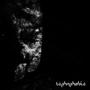 Image for 'Taphephobia'