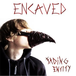 Image for 'Fading Entity'