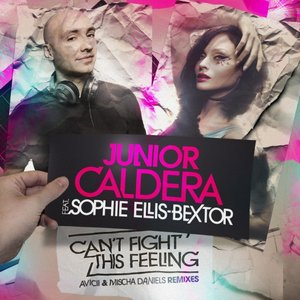 Image for 'Can't Fight This Feeling'