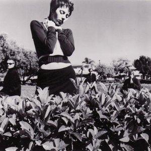 Image for 'Lisa Hall'