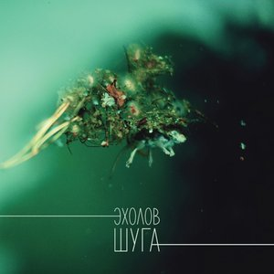 Image for 'Шуга'